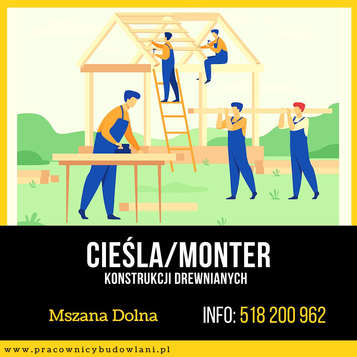 Cieśla konstrukcyjny / Monter konstrukcji drewnianych / Stolarz - praca stacjonarna