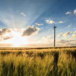 Inżynier Budowy – farma wiatrowa – Rawicz